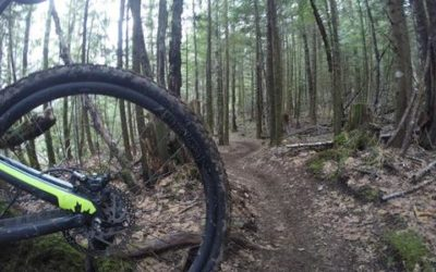 Industry 9/TR36 NOBL Wheelset Review